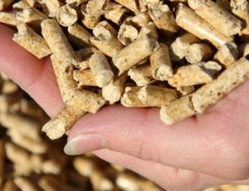 Comment sont fabriqués les pellets ? D'où proviennent-ils ?
